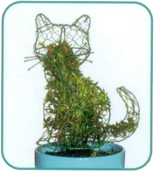 Instructions to fill a mini topiary with a plant
